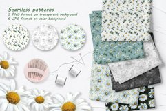 Daisy Watercolor Clipart Product Image 5