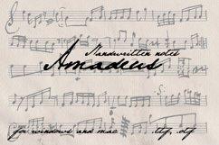 Amadeus. Handwritten notes Product Image 1