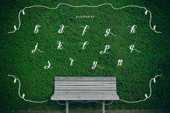 Web Font Hedge Product Image 2