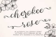 Cherokee Rose Calligraphy Script Product Image 1