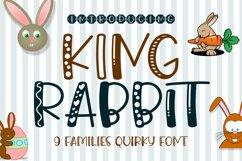 King Rabbit - 9 Styles Fun Playful Font Product Image 1