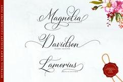 Bettrisia Script - Elegant Calligraphy Font Product Image 5