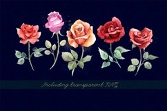 5 watercolor roses Product Image 2