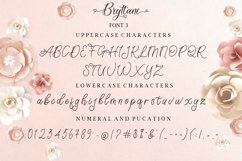 Bryttani Font Trio Product Image 12
