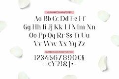 Web Font Tavania Font Product Image 2