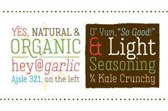Garlic Salt Font Family Product Image 2