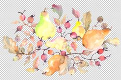Branch of pears Watercolor png Product Image 2