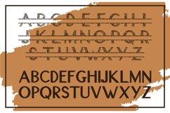 Leopard Split Font - A Monogram Font Product Image 2
