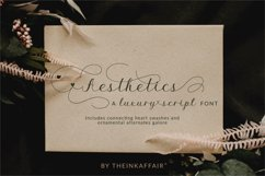 Aesthetics luxury script font Product Image 1