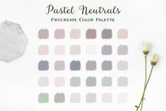 Pastel Neutrals Procreate Color Palette Product Image 1