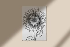 Sunflower clipart collection Product Image 2