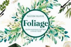 Foliage - Watercolour Leafs Product Image 1