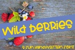 Web Font Wild Berries - A Fun Hand-Written Font Product Image 1