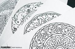 Vector Animals Mandala Set Product Image 6