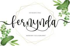 Fernynda Product Image 1
