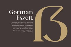 Breadley Serif Product Image 3
