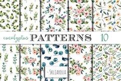 Eucalyptus Patterns Product Image 1