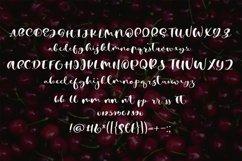 Cherry Heart Script Font Product Image 3