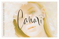 Canari   Signature Font Product Image 1
