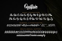 Quillain Product Image 2
