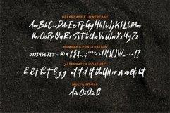 Web Font Baghoy - A Stylish Brush Font Product Image 6