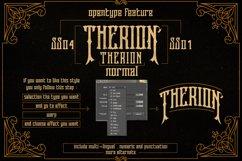 Web Font Therion Typeface Ornament Bonus Product Image 6