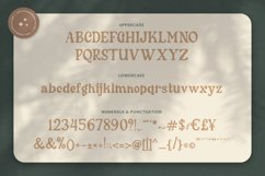 Cherly Blossom Modern Chic Serif Product Image 4
