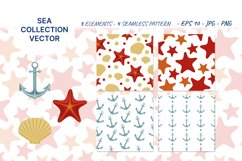 Vector illustration of sea shell, star and anchor. Patterns Product Image 1