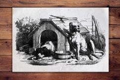 Vintage Dog Illustration, Animal Antique French Decor Product Image 1