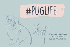 Pug Illustrations - Editable Humorous Funny Vector Pugs Product Image 1