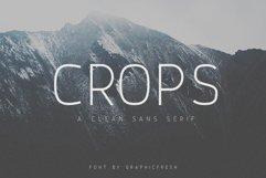 Crops - A Clean Sans Serif Product Image 1