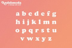 Andromeda // A Vintage Soft Serif Font Product Image 5