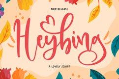 Heybing Product Image 1