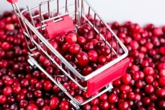 Shopping Trolley with ripe fresh cranberries. Berries. Product Image 1