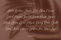Collathives Signature Brush Font Product Image 5
