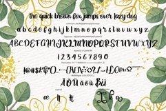 Jelita | Modern Script Product Image 5