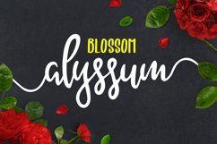 Alyssum Blossom Product Image 1