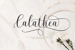 Calathea - Elegant Calligraphy Font Product Image 1