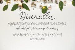 Dianella Font Product Image 2