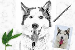 Pencil Drawing Photoshop Action Product Image 6