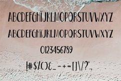 Web Font Beach Life Font Product Image 5
