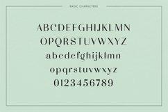 Adagio Decorative Ligature Font Duo Product Image 2