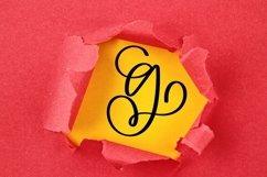 Web Font Monogram Letters Font - Swoosh-y Beautiful Hand Let Product Image 6