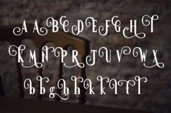 Web Font Confidential Product Image 3