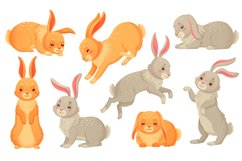 Cartoon bunny. Rabbits pets, easter bunnies and plush little Product Image 1