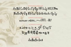Web Font Sahrul - Modern Brush Script Font Product Image 6