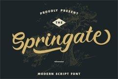 Springate - Modern Script Font Product Image 1