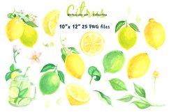 Watercolor set Lemonade Citrus Graphics Product Image 2
