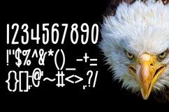 Web Font Eagle Eyes Product Image 2