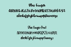 Blue Ginger Font Duo  Product Image 2